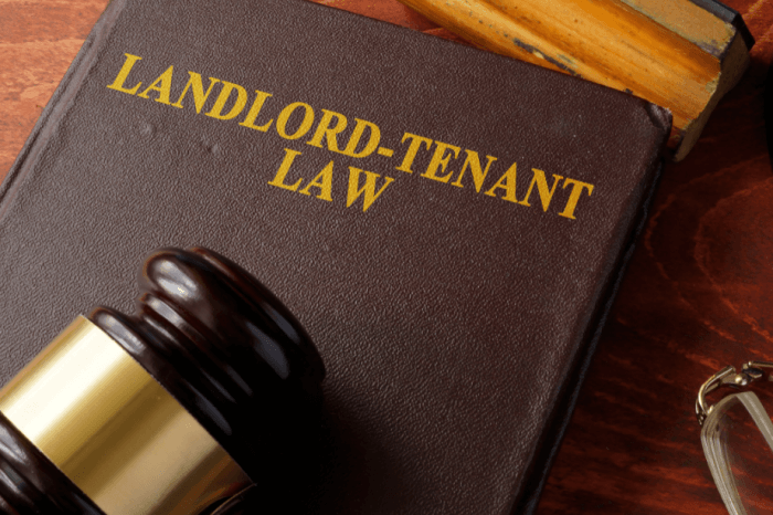 Landlords Who Use Self-Help Remedies to Evict Tenants in Default