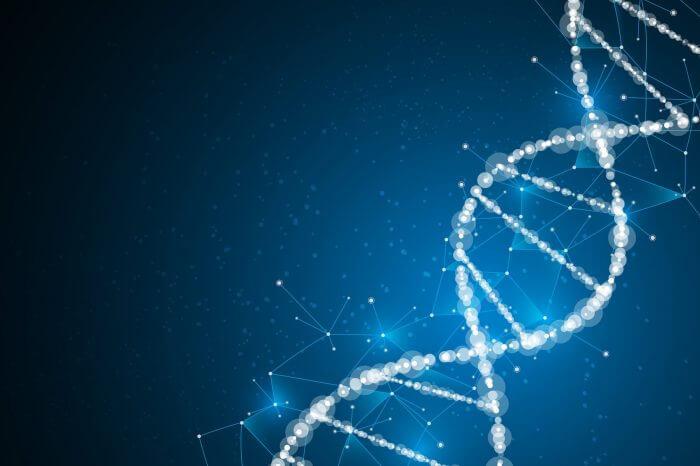 The DNA Of An NDA