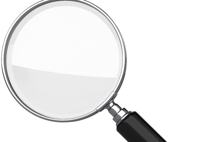 Investigating Occupational Fraud