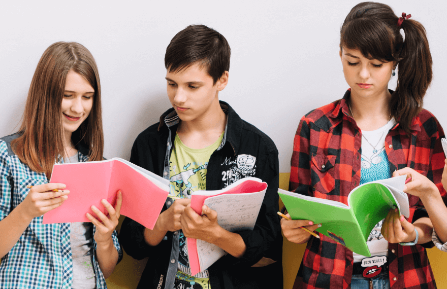 Ohio's Standards For Gifted Student Education