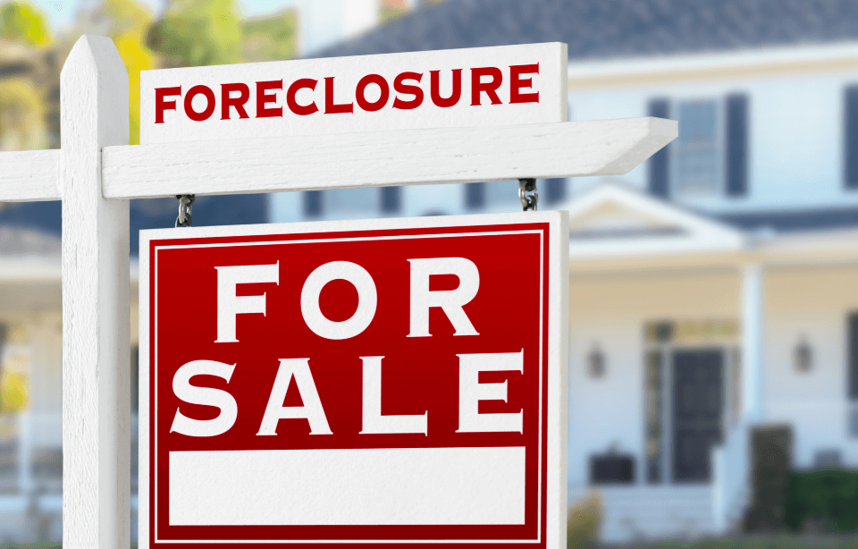 Foreclosure Survivor… Life After the Storm